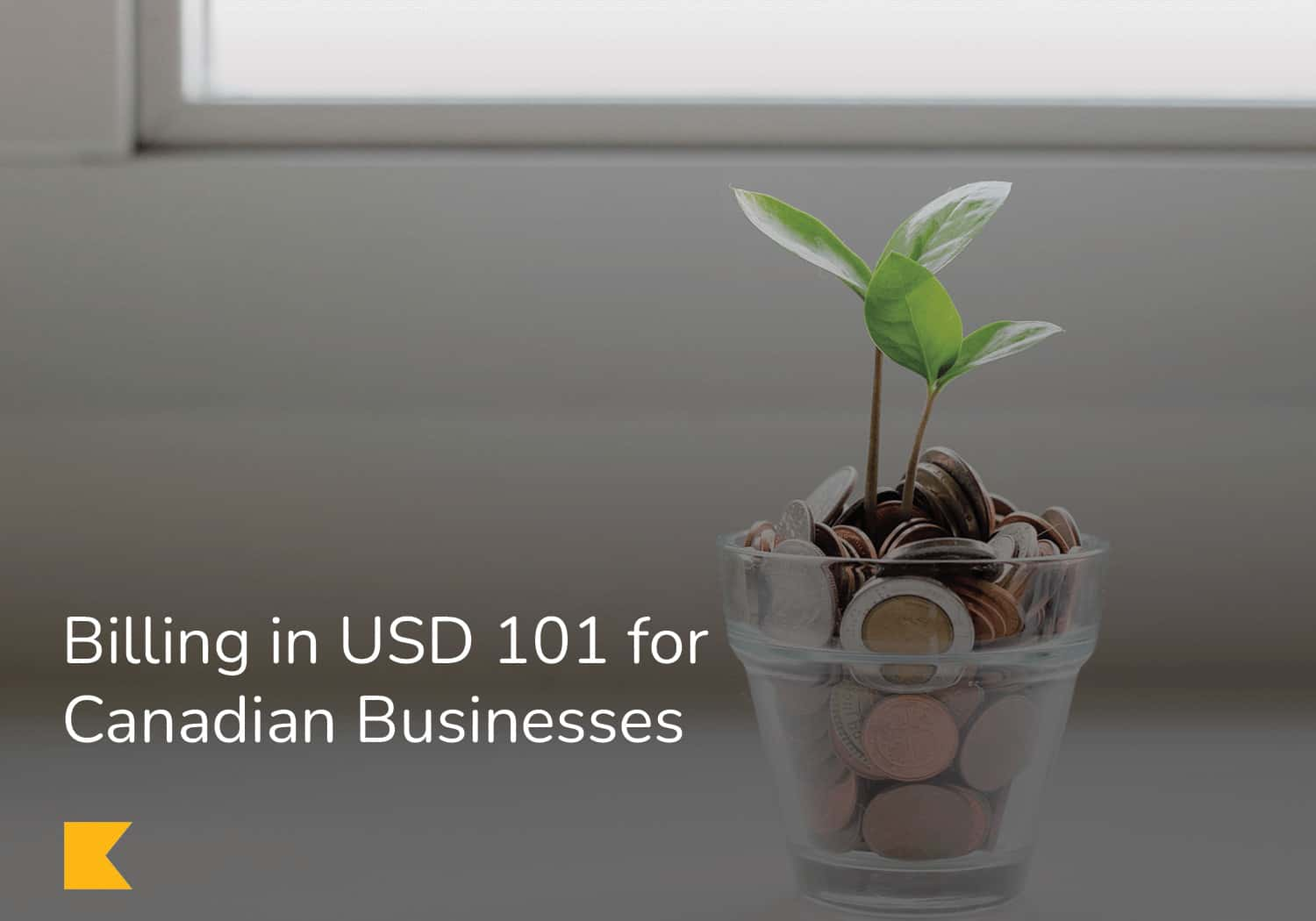 billing in USD 101 for Canadian Businesses